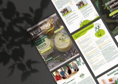 Bonduelle : création d'un magazine numérique illustré